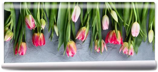 Fototapeta - Fresh tulip flowers