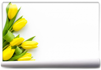 Fototapeta - Spring composition. Delicate yellow tulips on white background top view space for text border