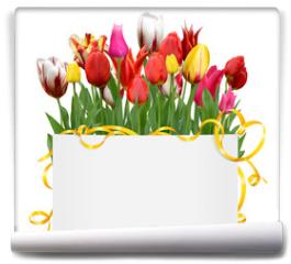 Fototapeta - Blumen 1049