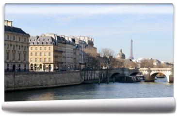 Fototapeta - The River Seine at the Pont Neuf bridge, Paris, France