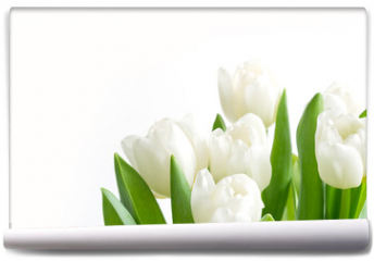 Fototapeta - Bouquet of white tulip on white. Floral pattern. Space for text.