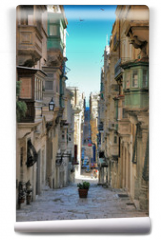 Fototapeta - long view of maltese street