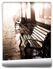 Fototapeta - Bench in night alley with lights in Odessa,