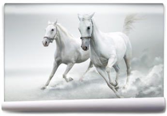 Fototapeta - White horses