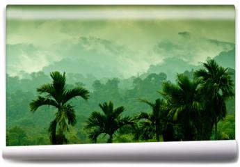 Fototapeta - Selva de Sumatra