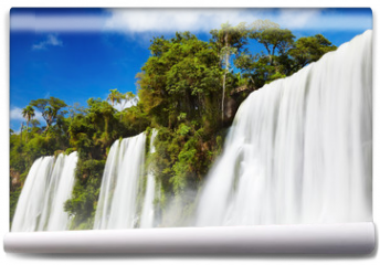 Fototapeta - Iguassu Falls, view from Argentinian side