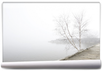Fototapeta - Pier and white birch trees on foggy lake