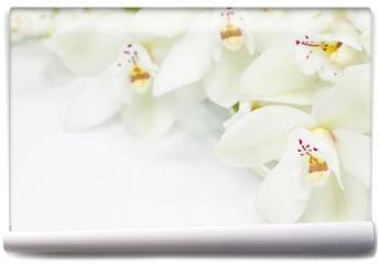 Fototapeta - Orchid Flowers