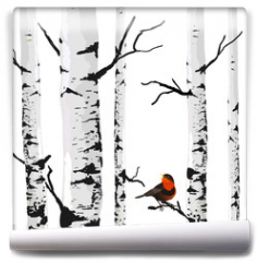 Fototapeta - Bird of birches, vector drawing with editable elements.