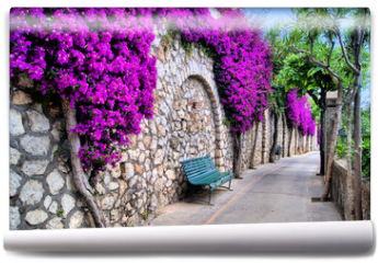 Fototapeta - Vibrant flower draped pathway in Capri, Italy
