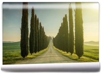 Fototapeta - Tuscany, Landscape. Italy