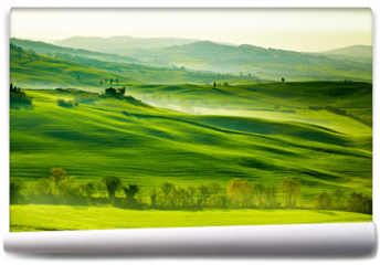 Fototapeta - Countryside, San Quirico´Orcia , Tuscany, Italy