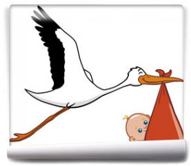 Fototapeta - Stork and baby