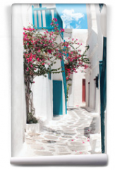 Fototapeta - Traditional greek alley on Mykonos island, Greece