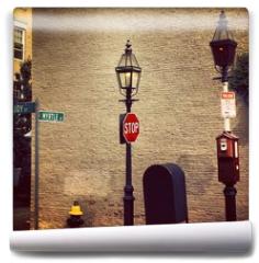 Fototapeta - New england in Boston City