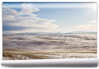 Fototapeta - sunny landscape of wide field with dry grass under snow