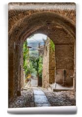 Fototapeta - antique Italian alley