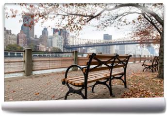 Fototapeta - New York - Roosevelt Island
