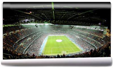 Fototapeta - foot ball stadium