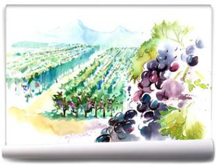 Fototapeta - vineyards