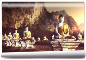 Fototapeta - Buddhas garden