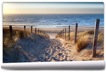 Fototapeta - path to North sea beach in gold sunshine