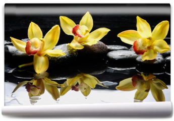Fototapeta - still life with three orchid on pebble