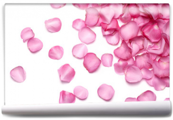 Fototapeta - Petals of pink rose
