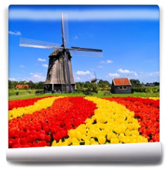 Fototapeta - Vibrant tulips with windmill, Netherlands