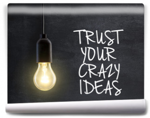Fototapeta - Light bulb lamp on blackboard background with idea quote