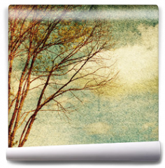 Fototapeta - Grunge vintage nature background