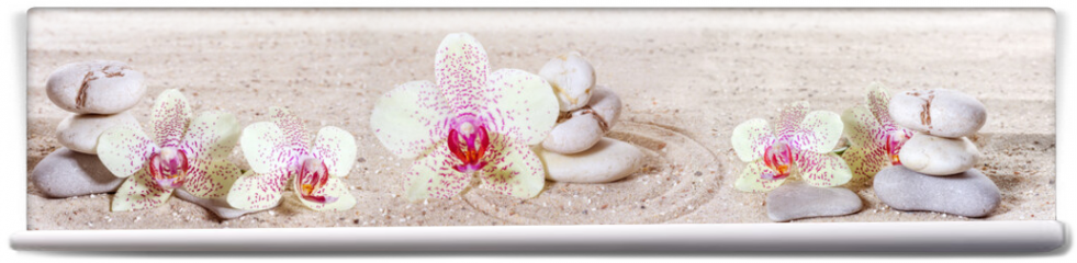 Fototapeta - Panorama with orchids and zen stones in the sand