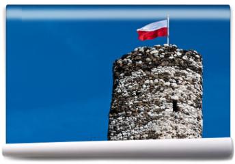 Fototapeta - Mirow castle