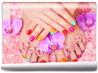 Fototapeta - Beautiful manicure and pedicure