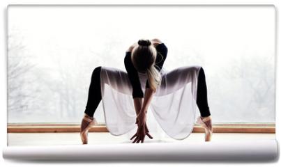 Fototapeta - Ballet Dancer