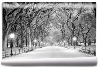 Fototapeta - Central Park, NY covered in snow at dawn