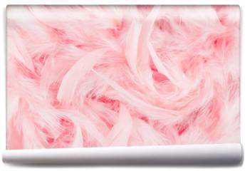 Fototapeta - Pink feathers background