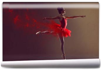 Fototapeta - Ballerina
