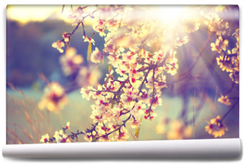 Fototapeta - Beautiful nature scene with blooming tree and sun flare