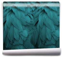 Fototapeta - Aqua Feathers