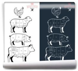 Fototapeta - American (US) Meat Cuts Diagrams