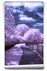 Fototapeta - A path through the park - Infrared landscape