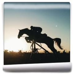 Fototapeta - Jumping horse silhouette