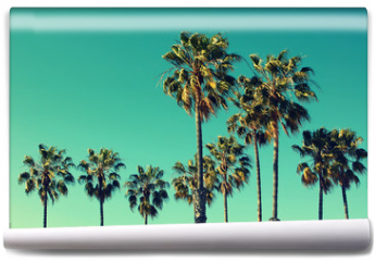 Fototapeta - Palm trees at Santa Monica beach. Vintage post processed. Fashion, travel, summer, vacation and tropical beach concept.