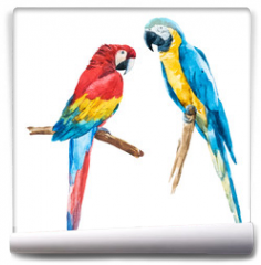 Fototapeta - Watercolor parrot