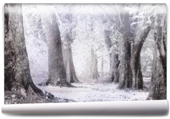 Fototapeta - winter foggy and snow storm in a  forest