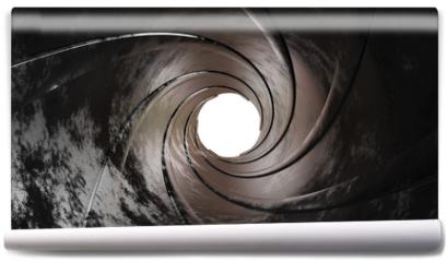 Fototapeta - Gun barrel