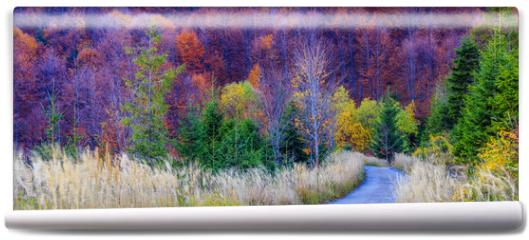 Fototapeta - Autumn in the Beskidy Mountains