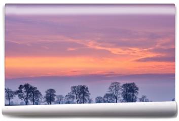 Fototapeta - After sunset colorful sky over fields