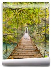 Fototapeta - Parque Nacional Fragas del Eume